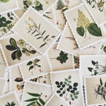 Botanical Illustration Stamp Set, Plant Stamp Stickers, Botanical Deco Stickers, Scrapbooking Stickers, Card Embellishment, Plant Lover Gift