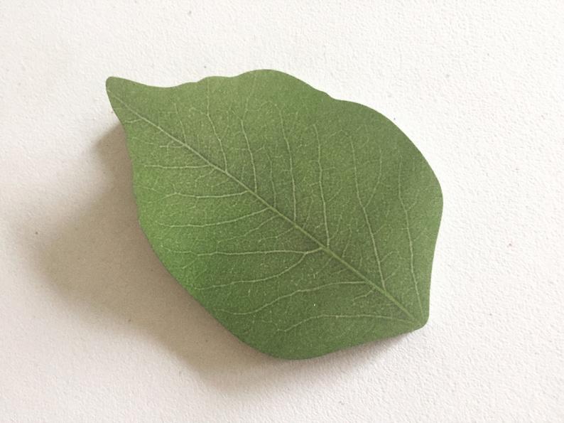 Green Leaf Sticky Notes Nature Leafy Sticky Notes Zen image 0