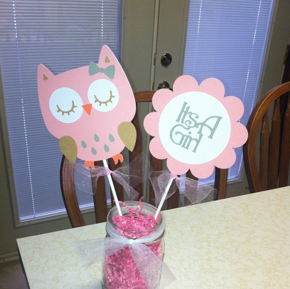 Set De Cumpleaños Buhos Birthday Owls Clear Stamps Set
