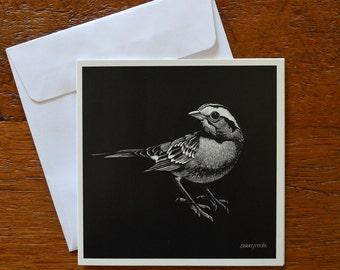 Sparrow 'Jack' - Greeting card 12.5cm x 12.5cm