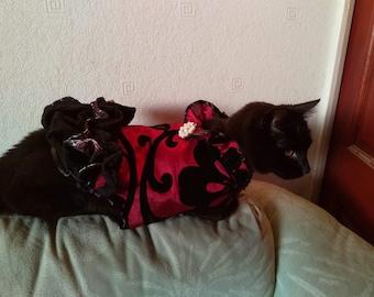 Dog/cat coat