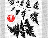 Fern Vector Silhouettes...