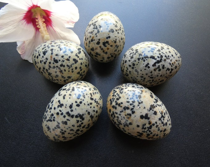 50x38mm Dalmatian Jasper Egg, Natural Gemstone, Free Acrylic Stand, Large Meditation Stone, Jasper Egg and Stand, Jasper Stone, Spotted