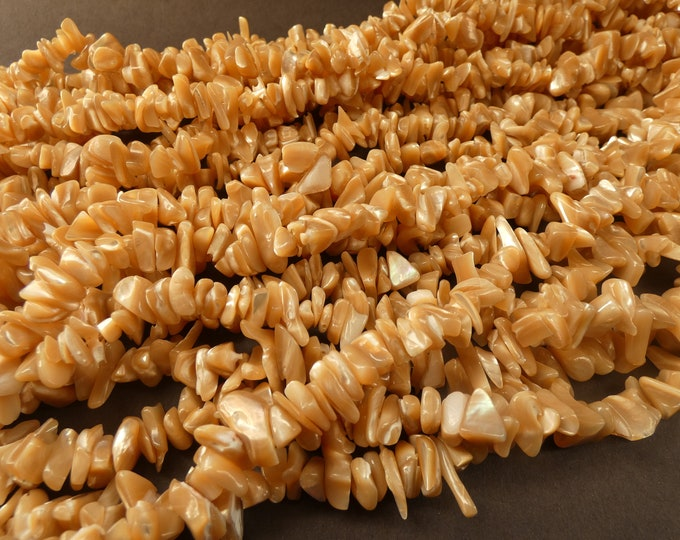 31.5 Inch 4-15mm Natural Shell Bead Strand, About 300 Beads, Beige Sandy Brown, Shell Nuggets & Chips, Drilled Seashell Shards, Sea Shells