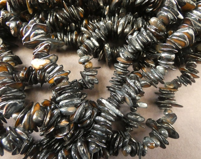 25 Inch 3-15mm Natural Shell Bead Strand, Dyed, About 300 Beads, Black Shell Nuggets & Chips, Drilled Seashell Shards, Black Seashell Pieces