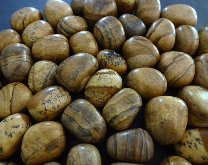 5 PACK 11-21mm Natural Half Drilled Picture Jasper Beads, Polished Nuggets, Beige Gemstones, Earring Stones, Jasper Stones, HALF DRILLED
