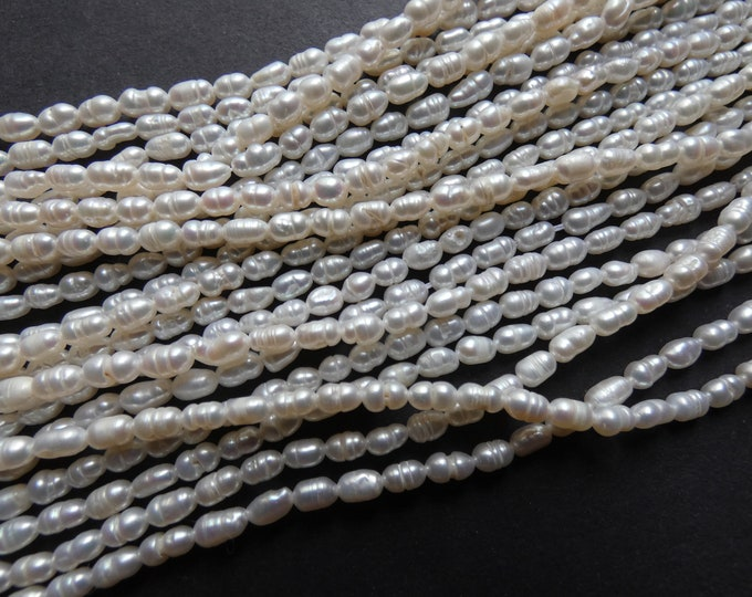14 Inch 4-6mm Natural Freshwater Pearl Bead Strand, About 64 Beads, Rounded Rice Shape, Pearls, White Pearl Beads, Pearl Jewelry Making