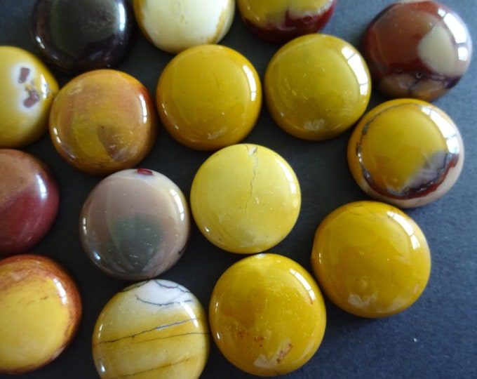 Set of 2 Natural Mookaite Gemstone Cabochon, 19.5-20x6-7mm, Mixed Colors, Round Cabochon, Polished, Stone Cabochon, Natural Gemstone, Earthy
