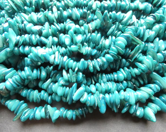 30 Inch 8-28mm Natural Freshwater Shell Bead Strand, Dyed, About 340-380 Beads, Teal Blue, Shell Nuggets & Chips, Drilled Seashell Bead