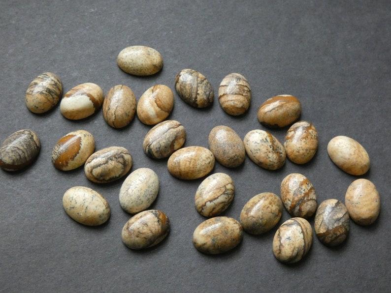 14x10mm Natural Picture Jasper Gemstone Cabochon Polished Oval Oval Cabochon Stone Cabochon Polished Jasper Gemstone Natural Gemstone