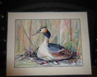 """Watercolor of a """"Great Crested Grebe"""" Signed A. Hulette"""