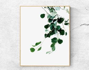 Botanical & Leaves