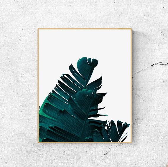 Palmier Imprimé Feuille Impression De Feuille De Bananier Impression Botanique Palmier Imprimer Imprimables Mur Estampes Art Mural Grande