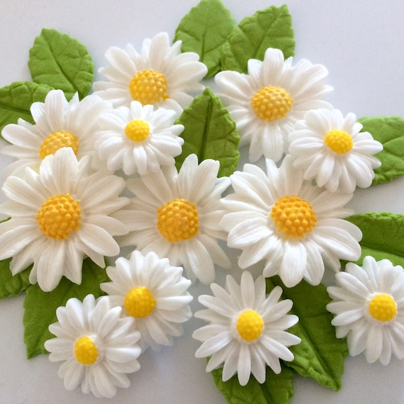 white daisies edible sugar paste flowers cake decorations etsy