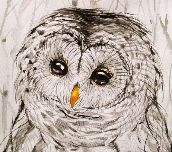 Barred Owl Drawing Original Artwork Black and White Bird Art Animal Illustration Wildlife 10.6x12in