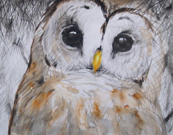 Original Watercolor Painting Owl Original Artwork