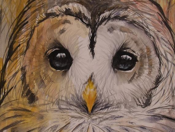 Original Watercolor Barred Owl Painting Bird Artwork Animal Nature Art Original Artwork
