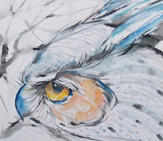 Old Owl Original Drawing Watercolor Painting Bird Original Artwork