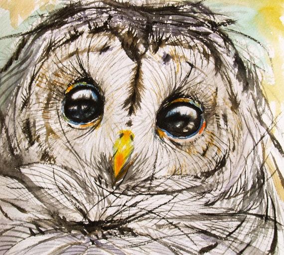 Owl Drawing Original Artwork Barred Owl Bird Art Animal Illustration Wildlife 10x11in