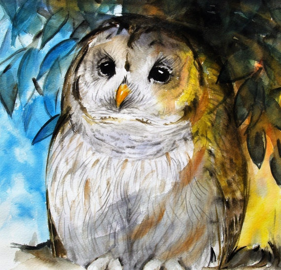 Bird Art Barred Owl Original Watercolor Painting Owl Animal Artwork Wildlife 12x13in
