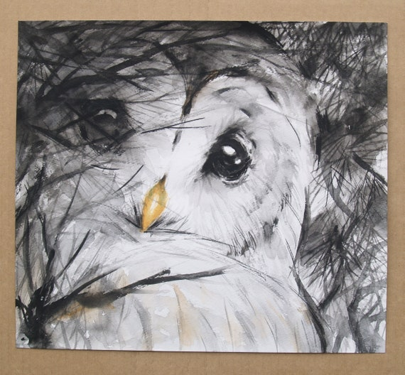Owl Original Watercolor Painting Black White