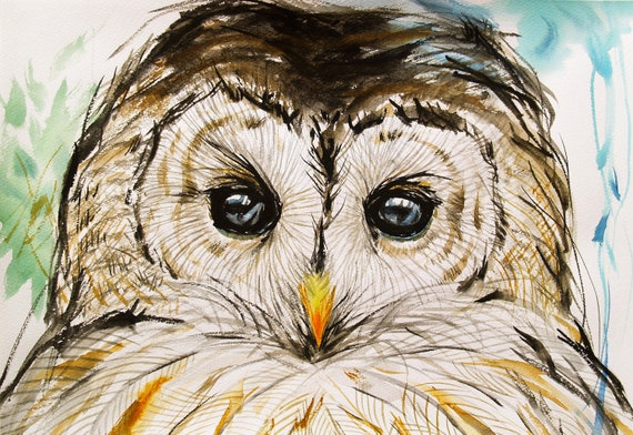 Barred Owl Drawing Original Artwork Bird Art Animal Illustration Wildlife 10.6x14.9in