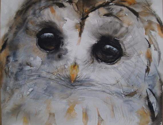 Bird Art Owl Artwork Original Watercolor Painting Barred Owl Face Animal Illustration