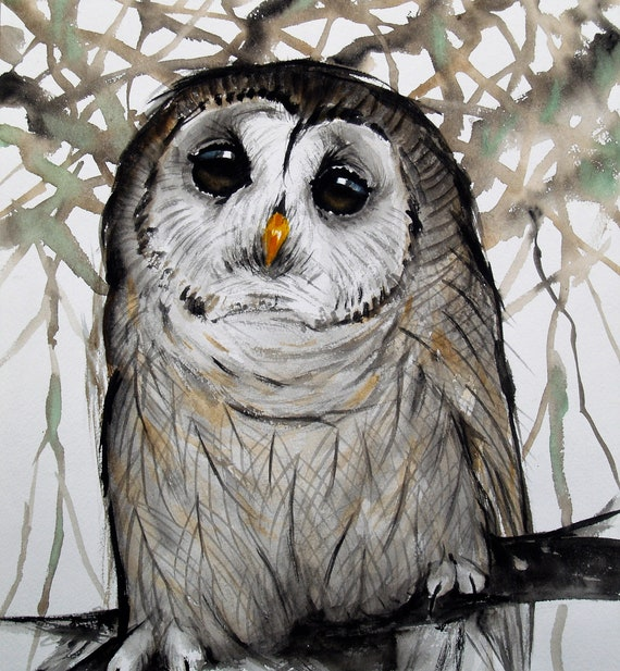 Original Watercolor Painting Barred Owl Artwork Gray Bird Painting Animal Art Nature Wildlife 12x15in