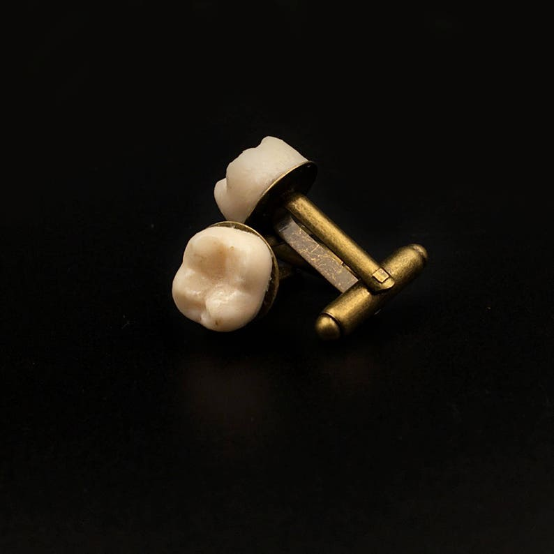 HUMAN TOOTH CUFFLINKS gemelli dente gemelli ossa gift for him teeth replica macabre taxidermy oddities molar gothic jewelry