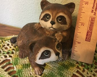 Raccoon Brothers