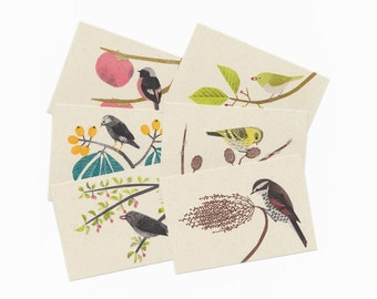 Risograph Postcards - 'Wild Birds that eat Fruit, Nut and Seed'  - 6 sheets