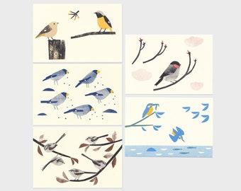 5 Wild birds - Risoprint Postcards