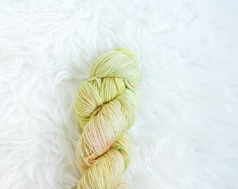 carnivore - worsted weight yarn - 100% superwash merino