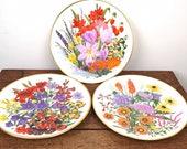Wedgwood vintage plates, ...