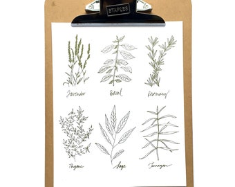 """Herbs Pen & Ink Drawing *Digital Print* 8x10"""", Herbs Calligraphy Hand Lettering and Illustration"""