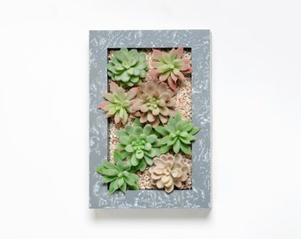 Faux Succulent Wall Planter