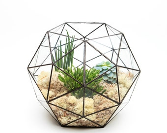 Fully Assembled Supersize Aztec Hexagon Terrarium