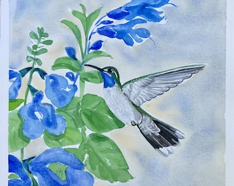 """Original Watercolor Painting, One of a Pair - A Blue Throated Hummingbird Flies to the Blue Salvia Flowers,  9 x 9 """"  -  Not a Print or Copy"""