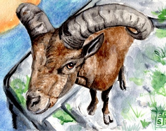 "Original Watercolor Art - 8x6"" (20.32 x 15.24cm)-  Wild Goat - Caucasian Tur -  Capricorn - Not a print or copy"