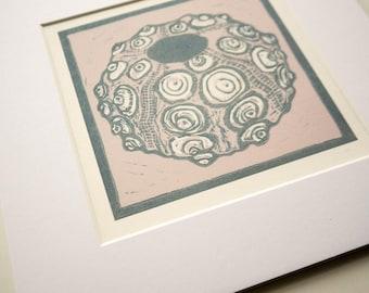 Sea Urchin shell print ready to frame