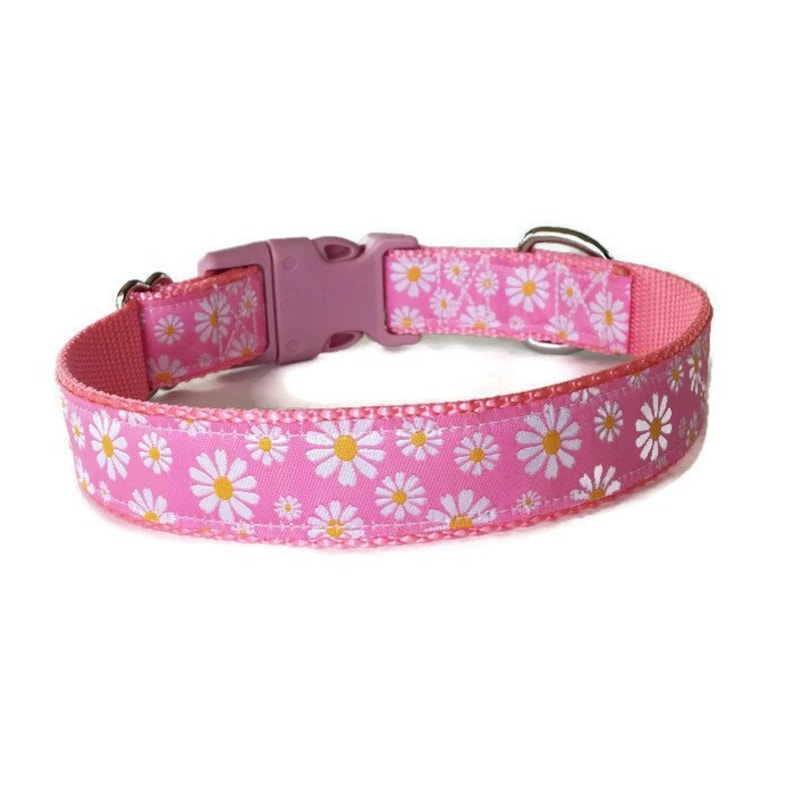 Charming Pink with Black Pink /& White Daisies Flower Dog Pet Collar Adjustable