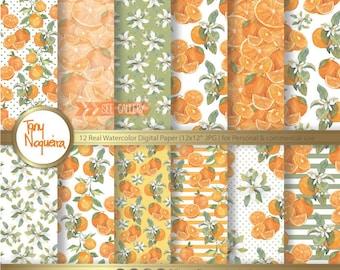 Naranjas Clip Art Ramas Y Flores Naranjo Png Fondo Etsy