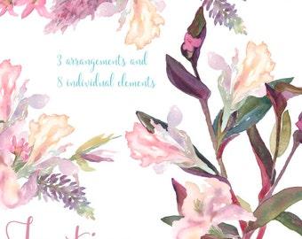Pale Vintage Florals Real Watercolor Wedding Elements, Clipart, PNG, Flowers, spring, Rustic, arrangement, posies, bouquet, for invitations