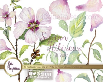 Syrian hibiscus rose mallow Leaves Leaf clip art images watercolor hand painted PNG transparent background for blog cards invitations