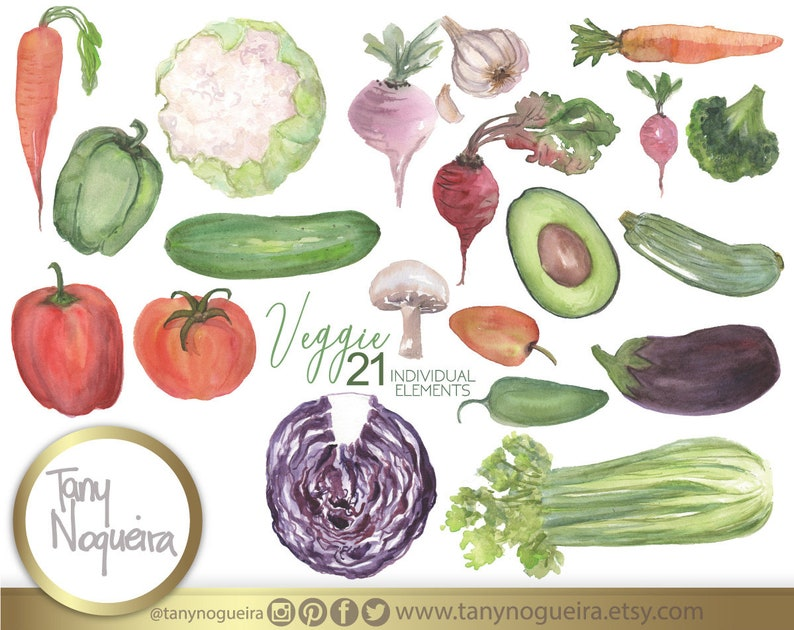 ef84ebc333aa4 Veggie, vegetables clip art images watercolor hand painted PNG and JPG for  blog cards invitations