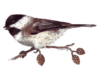 """Black-Capped Chickadee, 7"""" X 5"""" Archival Print from Original Watercolor"""