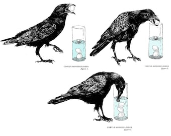 """The Crow and The Pitcher, Set of Three 10"""" X 8"""" Two-Color Silkscreen Prints (full set of 3 prints, limited edition of 100)"""