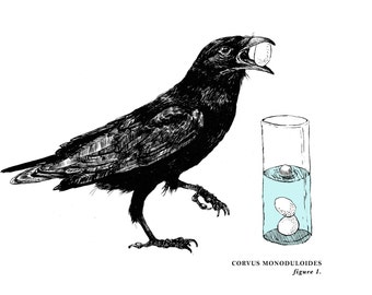 """The Crow and The Pitcher, 10"""" X 8"""" Two-Color Silkscreen Print (1 of 3 designs, limited edition of 100)"""