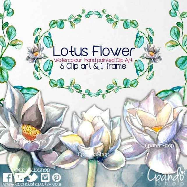 Flor de loto clipart flores clipart flores imprimibles   Etsy