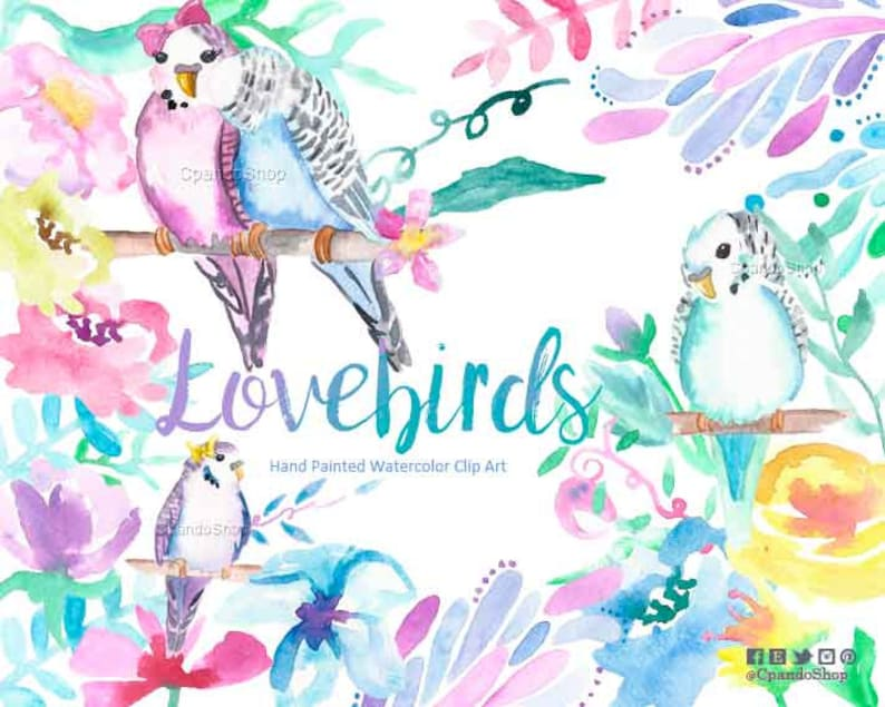 Lovebirds clip art, birds png, birds watercolor clip art, wedding,  babyshower, bachelorette party clipart, watercolor floral clipart birds